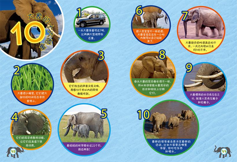 大象的旅程2