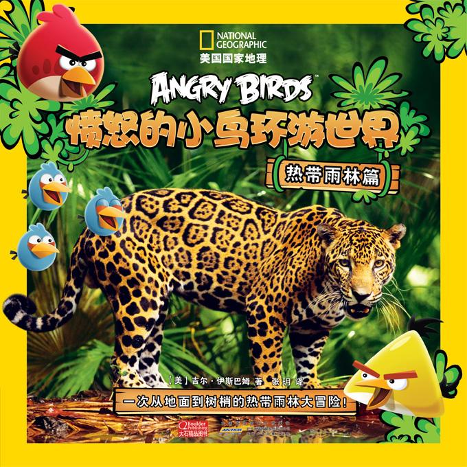 愤怒的小鸟--热带雨林 平面