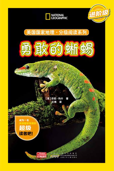 分级阅读 蜥蜴