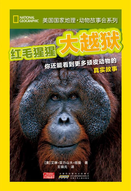 动物故事会 红毛猩猩