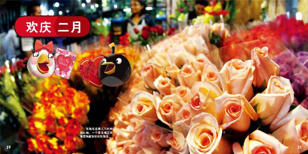 愤怒的小鸟--节日篇_5